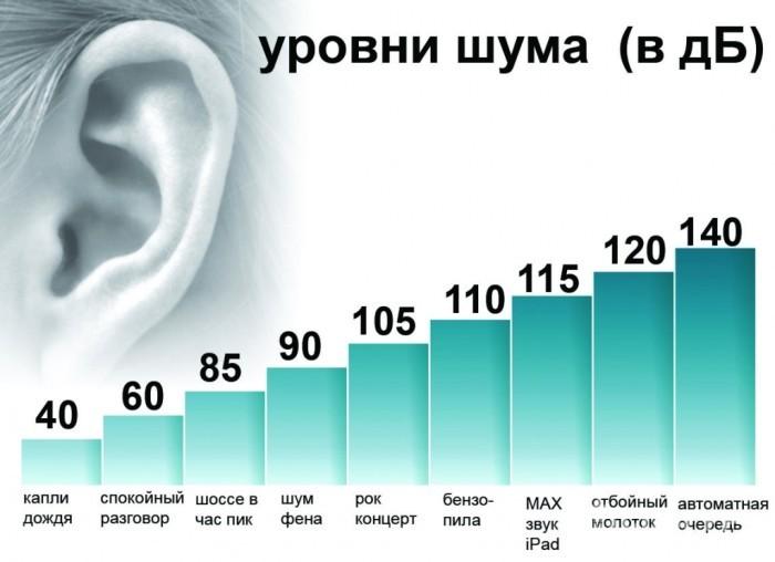 Самые шумные районы Санкт-Петербурга - Фото 2