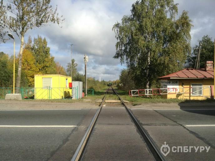 ЖК «Невские Паруса» -  стройка с видом на Неву от Setl City - Фото 8