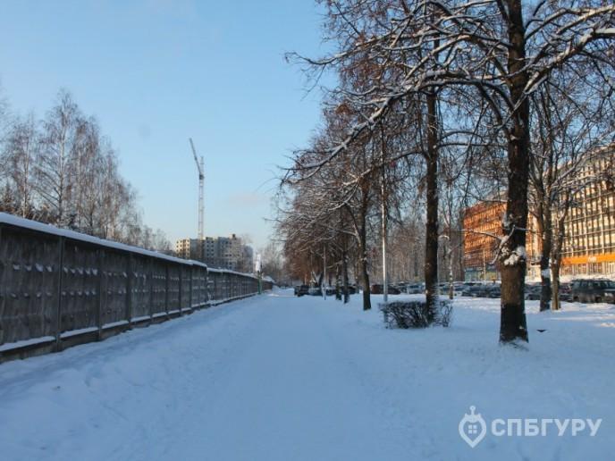 Cinema: большой жилой комплекс от ЛСР возле Богословского кладбища - Фото 8