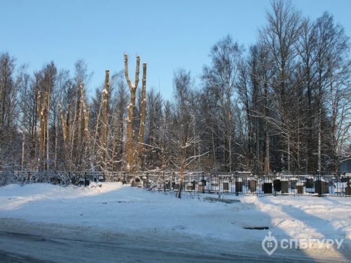 Cinema: большой жилой комплекс от ЛСР возле Богословского кладбища - Фото 9