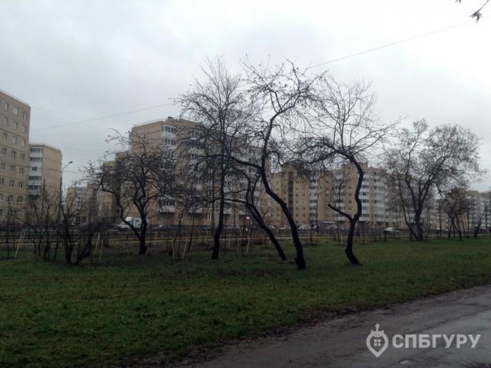 """ЖК """"Дважды два"""" - скромный комплекс в Красном селе. - Фото 2"""
