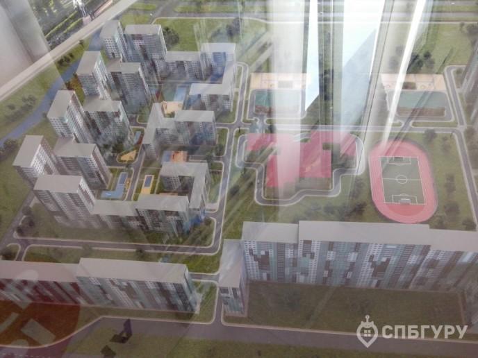 """""""Чистое небо"""": новый масштабный проект в Приморском районе - Фото 25"""