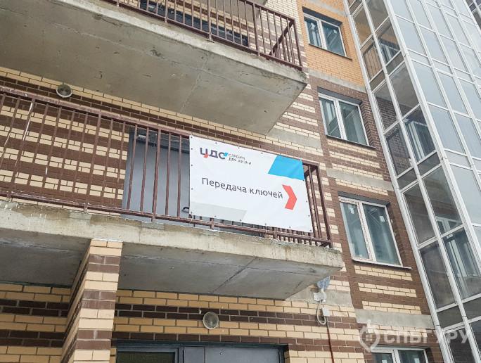 """ЖК """"Новое Янино"""": затянувшаяся стройка на границе с Петербургом - Фото 19"""