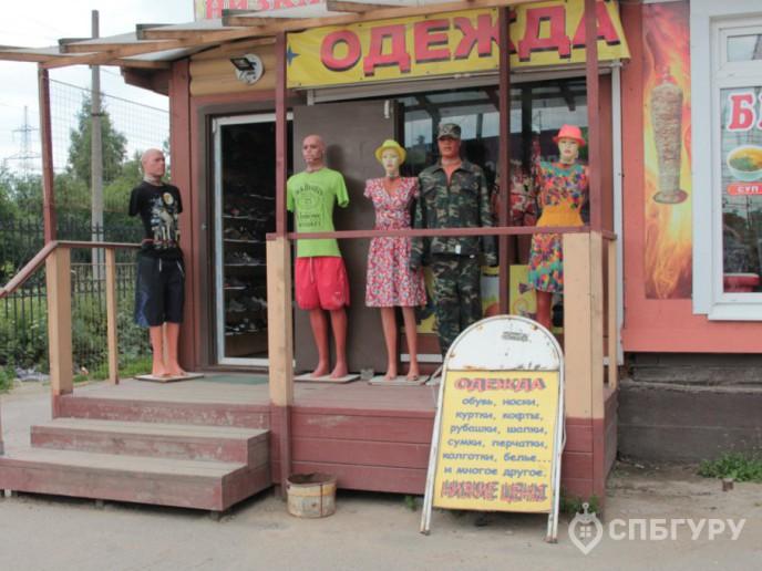 """ЖК """"Краски лета"""": очередной комплекс в Девяткино - Фото 4"""