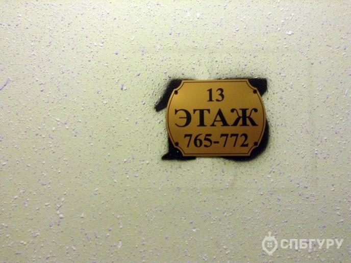 «Новое Мурино» - жилой комплекс от ЦДС за КАДом - Фото 50