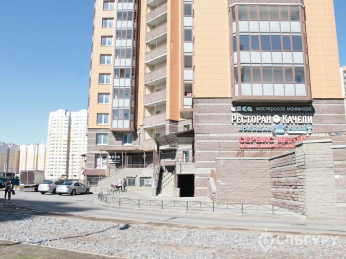 """""""Чистое небо"""": новый масштабный проект в Приморском районе - Фото 6"""