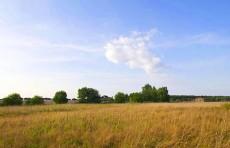 Бывшие земли Министерства обороны в Ленобласти могут передать под жилую застройку