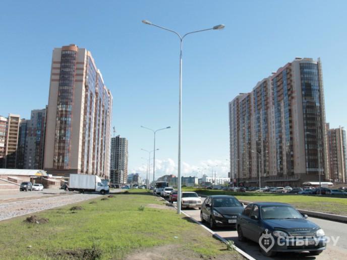 """""""Чистое небо"""": новый масштабный проект в Приморском районе - Фото 5"""