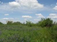 """Часть территории, где планировалось строить ЖК """"На Царскосельских холмах"""", продадут с аукциона"""