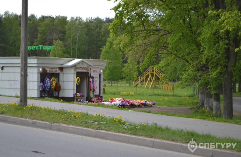 """ЖК """"Парголово"""": неторопливое строительство в тихом поселке - Фото 20"""