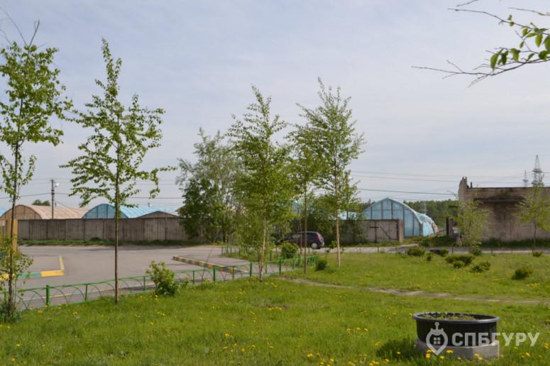 """ЖК """"Парголово"""": неторопливое строительство в тихом поселке - Фото 43"""