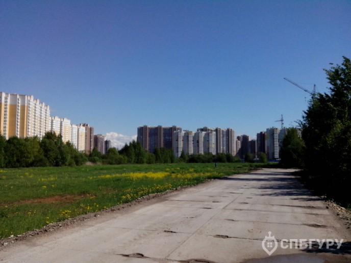 """""""Чистое небо"""": новый масштабный проект в Приморском районе - Фото 7"""