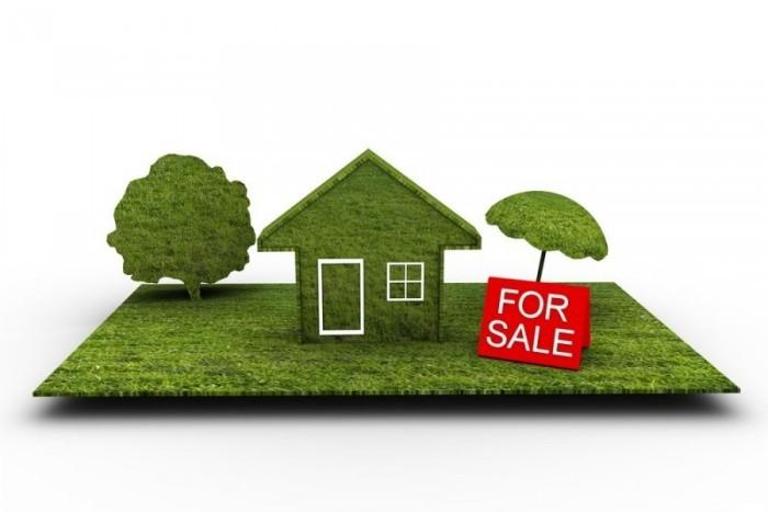 На земельном рынке Петербурга предложений стало больше, а цены упали