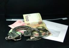 В Ленобласти задержан чиновник по подозрению в мошенничестве с земельными участками