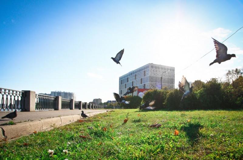 Дом-Мегалит на Неве - фото 3