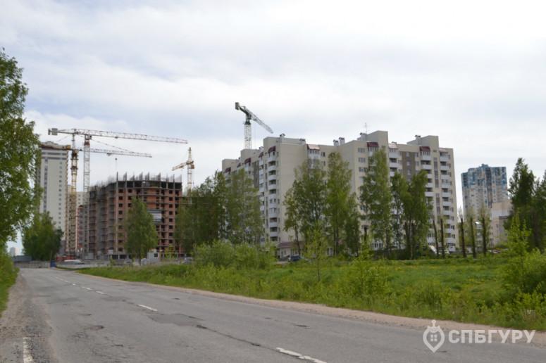 """ЖК """"Парголово"""": неторопливое строительство в тихом поселке - Фото 23"""