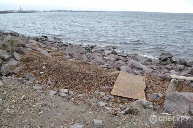 """ЖК """"Огни залива"""": городская окраина на морском берегу - Фото 32"""