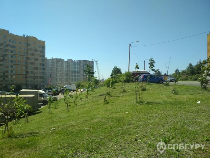 """ЖК """"Ювента"""": дом юношеских грез в скромном поселке - Фото 45"""