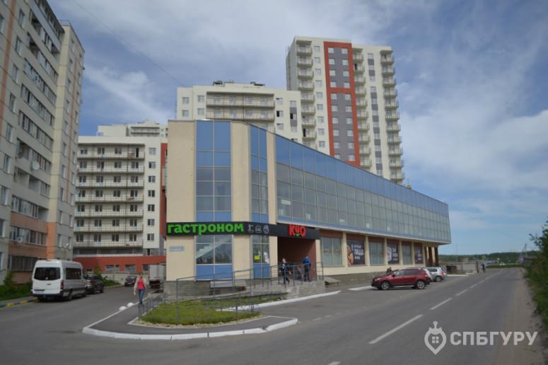 """ЖК """"Парголово"""": неторопливое строительство в тихом поселке - Фото 29"""