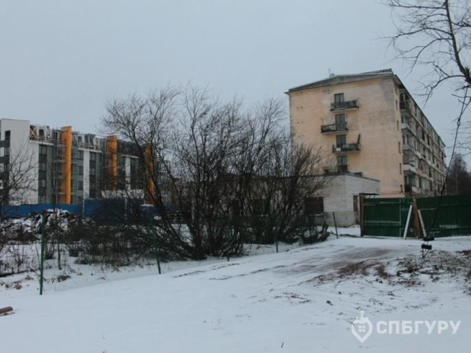 ЖК Inkeri: приятный малоэтажный комплекс в Пушкине - Фото 25