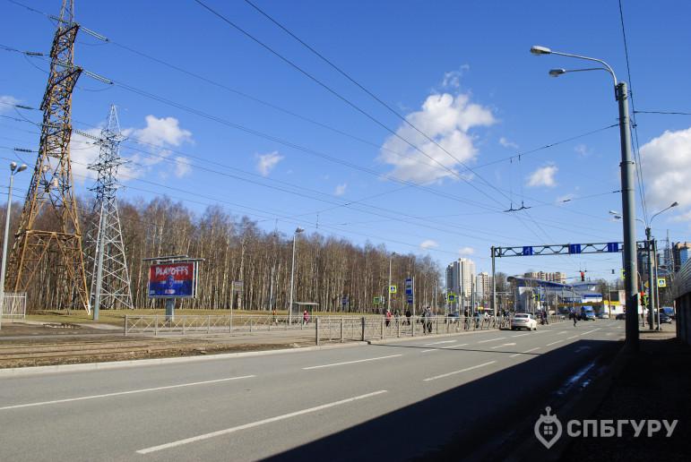"""ЖК """"Приморский квартал"""": корпуса вовсю строятся, а район не готов - Фото 24"""