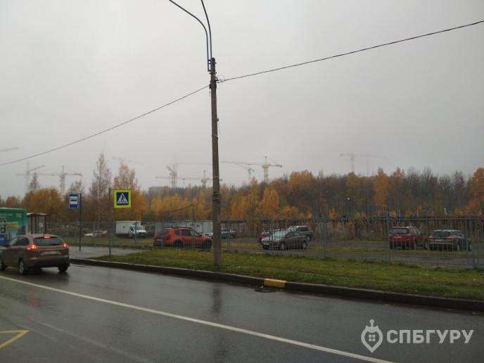 """ЖК """"New Time"""": диалог с природой под гул ЗСД - Фото 61"""