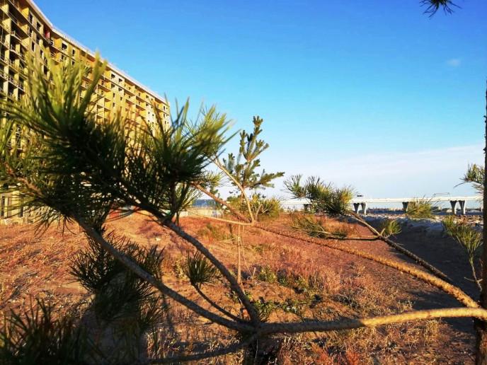 """ЖК """"Морская набережная"""": видовые квартиры среди песчаных дюн и бездорожья - Фото 29"""