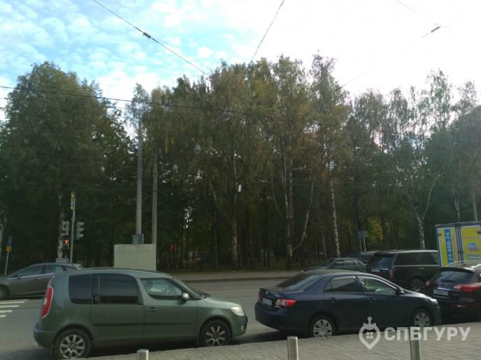 """ЖК """"Нева-Нева"""": бизнес-класс от казахского застройщика на шумном Среднем - Фото 35"""