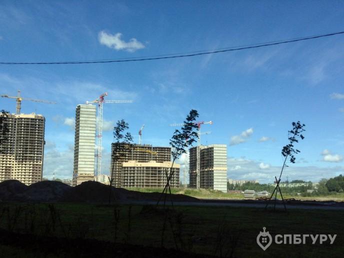 «Новое Мурино» - жилой комплекс от ЦДС за КАДом - Фото 13