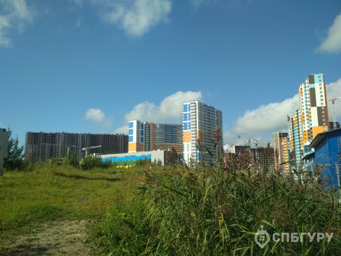 """ЖК """"Полис на Комендантском"""": маленькие квартирки в районе с большими планами - Фото 42"""