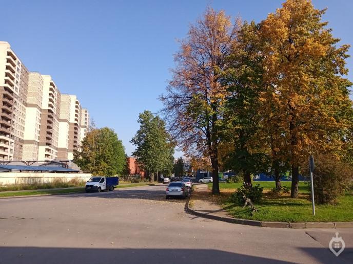 """ЖК """"ЦДС Полюстрово"""": дом размером с квартал - Фото 27"""