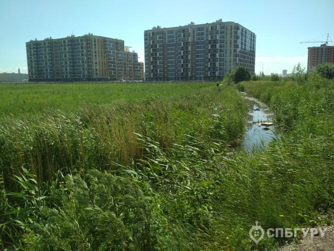 """ЖК """"Ювента"""": дом юношеских грез в скромном поселке - Фото 65"""