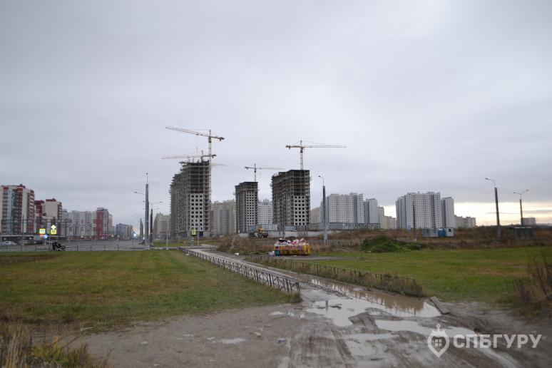 """ЖК """"Огни залива"""": городская окраина на морском берегу - Фото 36"""