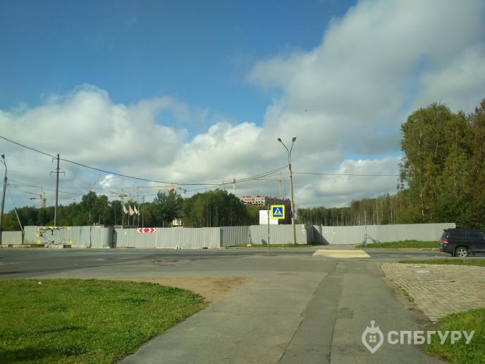 """ЖК """"Полис на Комендантском"""": маленькие квартирки в районе с большими планами - Фото 64"""