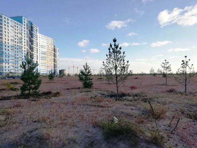 """ЖК """"Морская набережная"""": видовые квартиры среди песчаных дюн и бездорожья - Фото 18"""