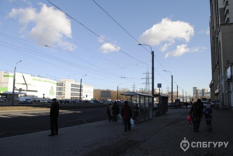 """ЖК """"Приморский квартал"""": корпуса вовсю строятся, а район не готов - Фото 43"""
