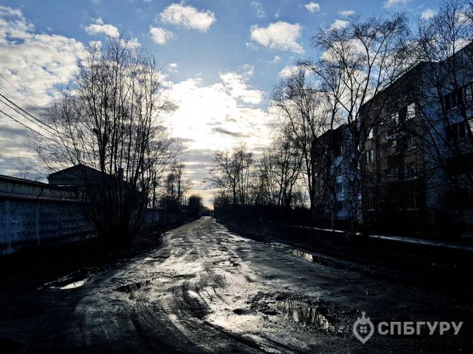 """ЖК """"Клёны"""": там, где лес шумит над морской волной - Фото 24"""