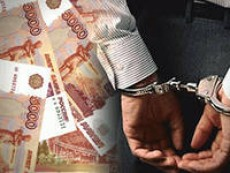 Госдума может рассмотреть вопрос об уголовной ответственности за растрату средств дольщиков