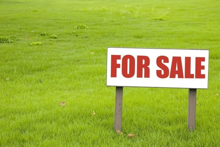 В Сестрорецке продадут земли под строительство жилья